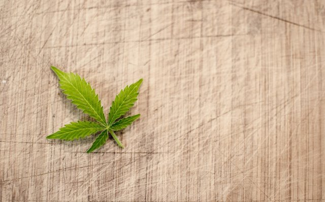 The Growing Cannabis Industry