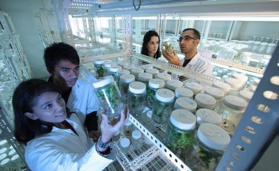 A College in Ohio is set to Offer Cannabis Lab Technician Major