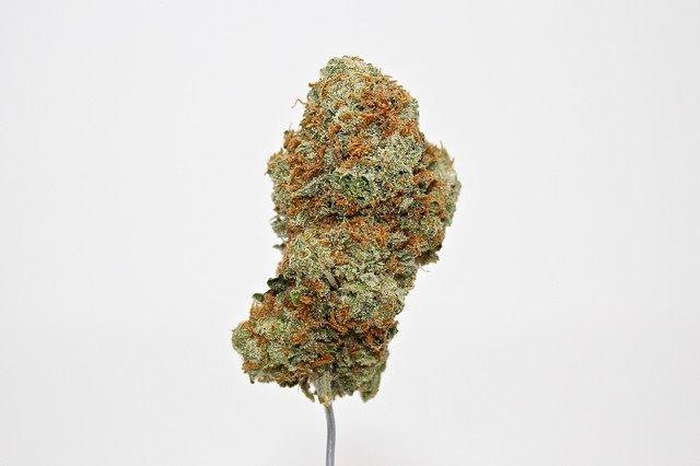 THC (Delta 9 tetrahydrocannabinol)
