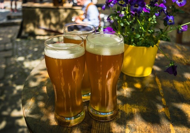 Scientists brew cannabinoids from beer yeast