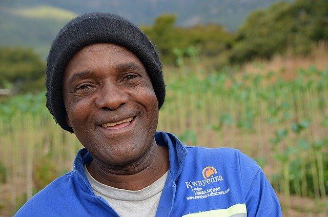 Cannabis in Zimbabwe - Cannabis en Zimbabue